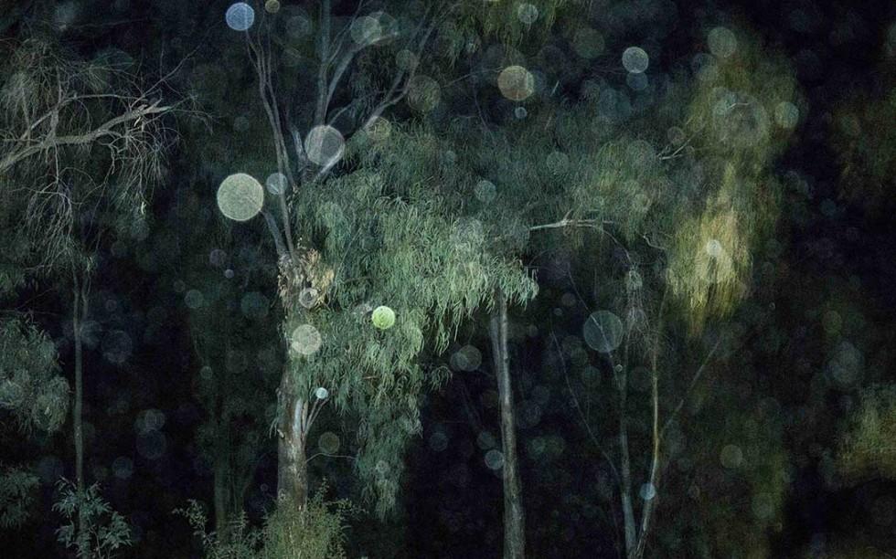 Marcello Nocera - Dreamer 4 Copertina